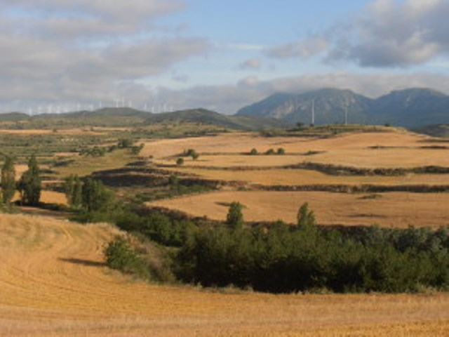 Etappe 78: Los Arcos - Logroño