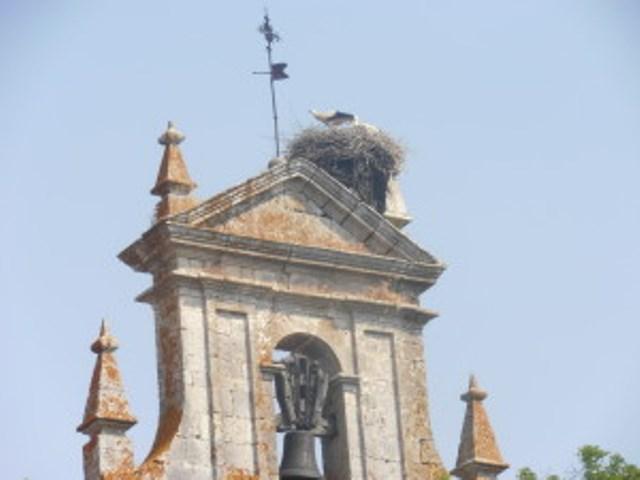 Een ooievaarsnest op de kerk