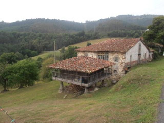 Terugreis 11: Cadavedo - Soto de Luiña
